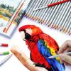 สีไม้ระบายน้ำ Marco Raffine 48 สี รุ่น 7120 Aquarelle Pencils เกรด Professional คุณภาพดี กล่องกระดาษ (พร้อมส่ง)