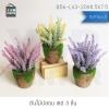 ต้นไม้ปลอม ต้นไม้แต่งบ้าน ดอกไม้พลาสติก ต้นไม้พลาสติก ดอกไม้ประดิษฐ์ (เซ็ต 3 ชิ้น) ขนาด 8.5x7.5x20 CM. รุ่น B56-LV3-20X8.5X7.5