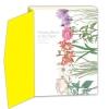 หนังสือสอนวาดภาพระบายสีไม้ ภาพดอกไม้แสนสวย Flowers bloom on the paper