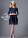 Lace Embroidered mini dress