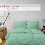 ชุดผ้าปูที่นอนสีพื้น-สีเขียวอ่อน รหัส No.05