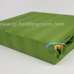 """ชุดผ้าปูที่นอนลายริ้วสีเขียว - Green Gallery Stripe 1"""""""
