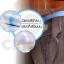 CASSA ถุงคลุมเสื้อ ถุงคลุมสูท ถุงใส่เสื้อผ้ากันฝุ่น ( 2 แพ็ค ) ขนาด 60x120 cm. รุ่น P36-60x120-05-2 thumbnail 6