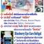 BGM Eye Care Softgel BGM Softgel บีจีเอ็มอายแคร์ซอฟเจล thumbnail 5