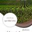 แนวข้อสอบ นักวิชาการส่งเสริมการเกษตรปฏิบัติการ กรมส่งเสริมการเกษตร (พร้อมเฉลย)
