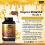 Auswelllife Propolis 1000 mg ออสเวลไลฟ์ พรอพอลิส thumbnail 3