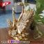 หงษ์ทองคู่เซมิคเคลือบทองแสนสง่า ขนาด 16.5*26.5*27 cm. thumbnail 1