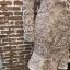 พร้อมส่ง ชุดMini Dress แขนยาวสีทอง thumbnail 10