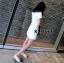 พร้อมส่ง เสื้อ+กางเกง สีขาวสไตล์ เรียบหรู thumbnail 4