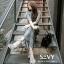 Maxi dress ชุดเดรสเกาหลี ทรงผูกป้าย พร้อมส่ง thumbnail 2