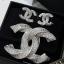 พร้อมส่ง Chanel Earring & Brooch thumbnail 3