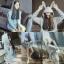 เสื้อผ้าเกาหลี พร้อมส่ง เสื้อหูกระต่าย thumbnail 4