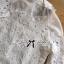 พร้อมส่ง เสื้อแฟชั่น เสื้อเกาหลี เชิ้ตขาวผ้าตาข่าย thumbnail 15
