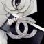 พร้อมส่ง Chanel Brooch งานเกาหลี thumbnail 4