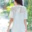 เสื้อเกาหลี พร้อมส่ง เสื้อคอกลม แขนตุ๊กตา thumbnail 11