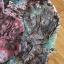 เดรสลูกไม้ พร้อมส่ง เดรสผ้าลูกไม้ ตกแต่งระบายปักลายดอกไม้ thumbnail 12