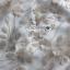 เดรสเกาหลี พร้อมส่ง เดรสผ้าทูลเลปักลายดอกไม้ thumbnail 8