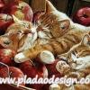 กระดาษสาพิมพ์ลาย สำหรับทำงาน เดคูพาจ Decoupage แนวภาำพ ลูกแมวขนฟูสีน้ำตาล 3 ตัว นอนกอดกันหลับไหลในถังใส่แอปเปิ้ล