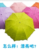 umbrella ร่มกันแดด ป้องกันรังสี UV สุดมหัศจรรย์ เมื่อร่มโดนน้ำจะเกิดลายดอกไม้ทันที