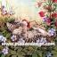 กระดาษสาพิมพ์ลาย สำหรับทำงาน เดคูพาจ Decoupage แนวภาำพ ลูกแมวตัวน้อยนอนหงายเก๋ง เล่นดอกไม้แดงในสวน thumbnail 1
