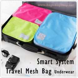 Smart System Travel Mesh Bag (Underwear)