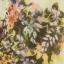 LILY เสื้อ พิมพ์ลายดอกไม้ ต่อผ้าชีฟอง ไซส์ S,M,L ขาว/เหลือง thumbnail 14