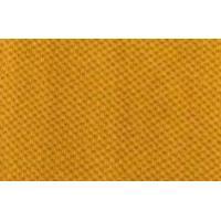สีเหลืองไพร #47
