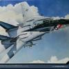 """AC12532 Usn F-14A """"VF-2 Bounty Hunters"""""""