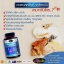 Auswelllife Glucosamine 1500 mg. กลูโคซามีน วิตามินบำรุงกระดูก และข้อ thumbnail 6