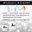 JB Collagen เจบี คอลลาเจน ไตรเปปไทด์ thumbnail 12