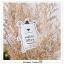 Powder 50++ Sunscreen 5 ml. แป้งกันแดดหมีขาว thumbnail 1