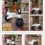 ขาไถ 3 ล้อ ฝึกการทรงตัว MINI-bike thumbnail 1